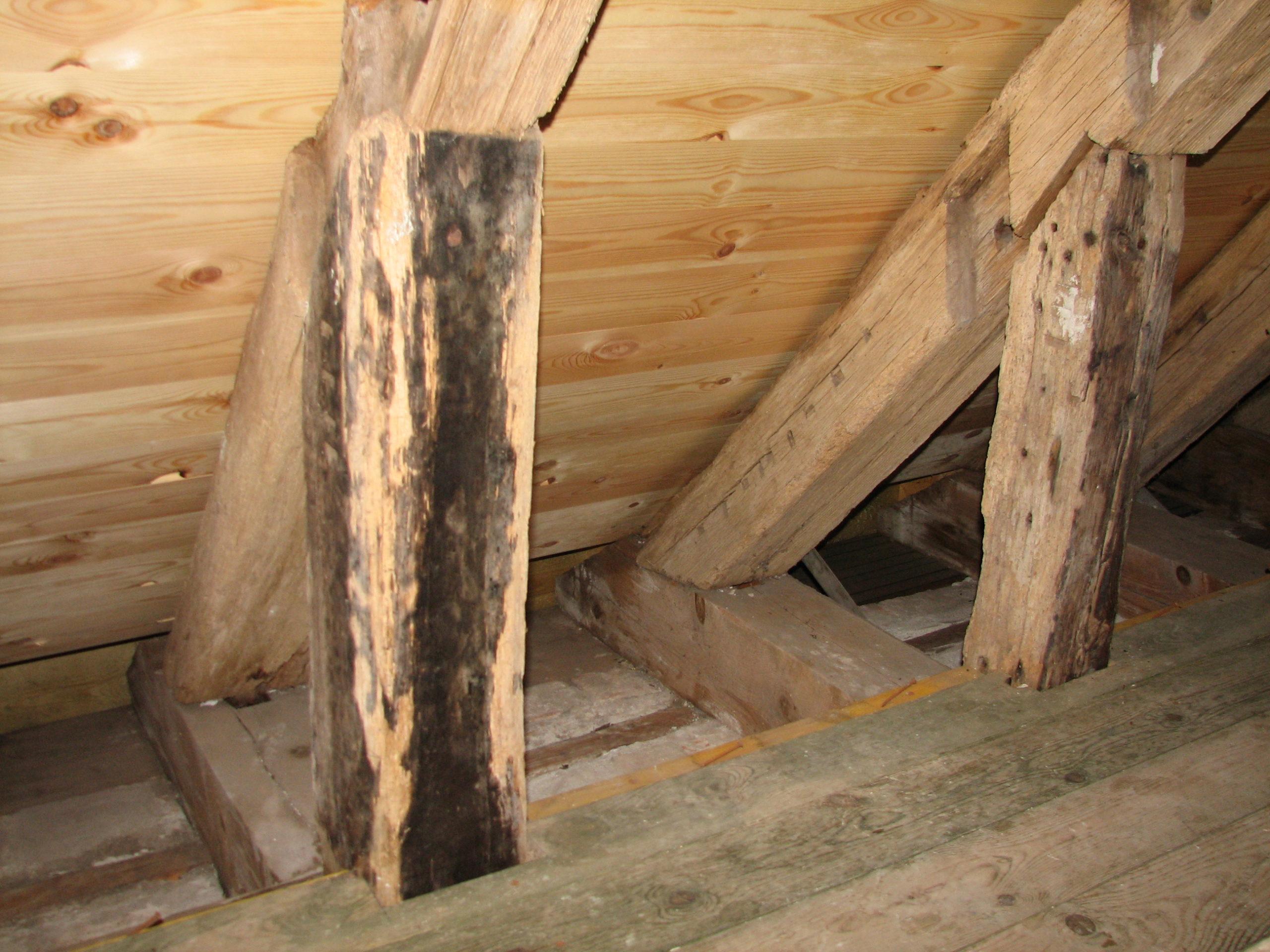Spor efter Jens Langkniv på loftet i Ørum Kirke